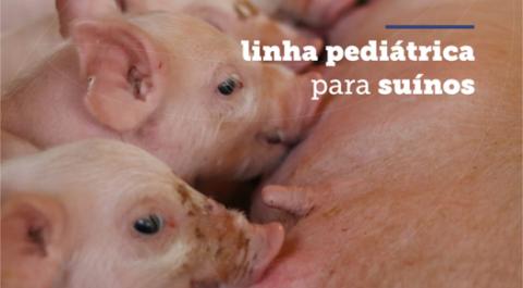 Linha pediátrica para suínos
