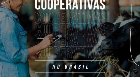 Dia do Cooperativismo