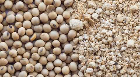 Farelo de soja muito caro? Como reduzir a proteína...