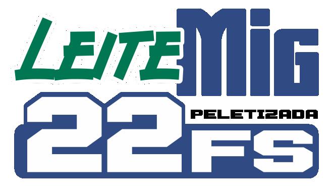 LEITEMIG FS 22P