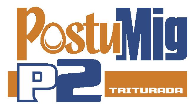 POSTUMIG P2 T